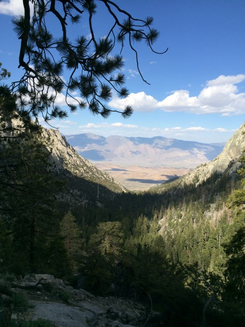View from Mt Whitney Trail