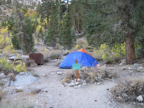 Onion Valley Campground site